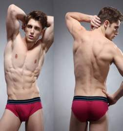 Брифы в сетку ZPOH Burgundy Mesh Brief